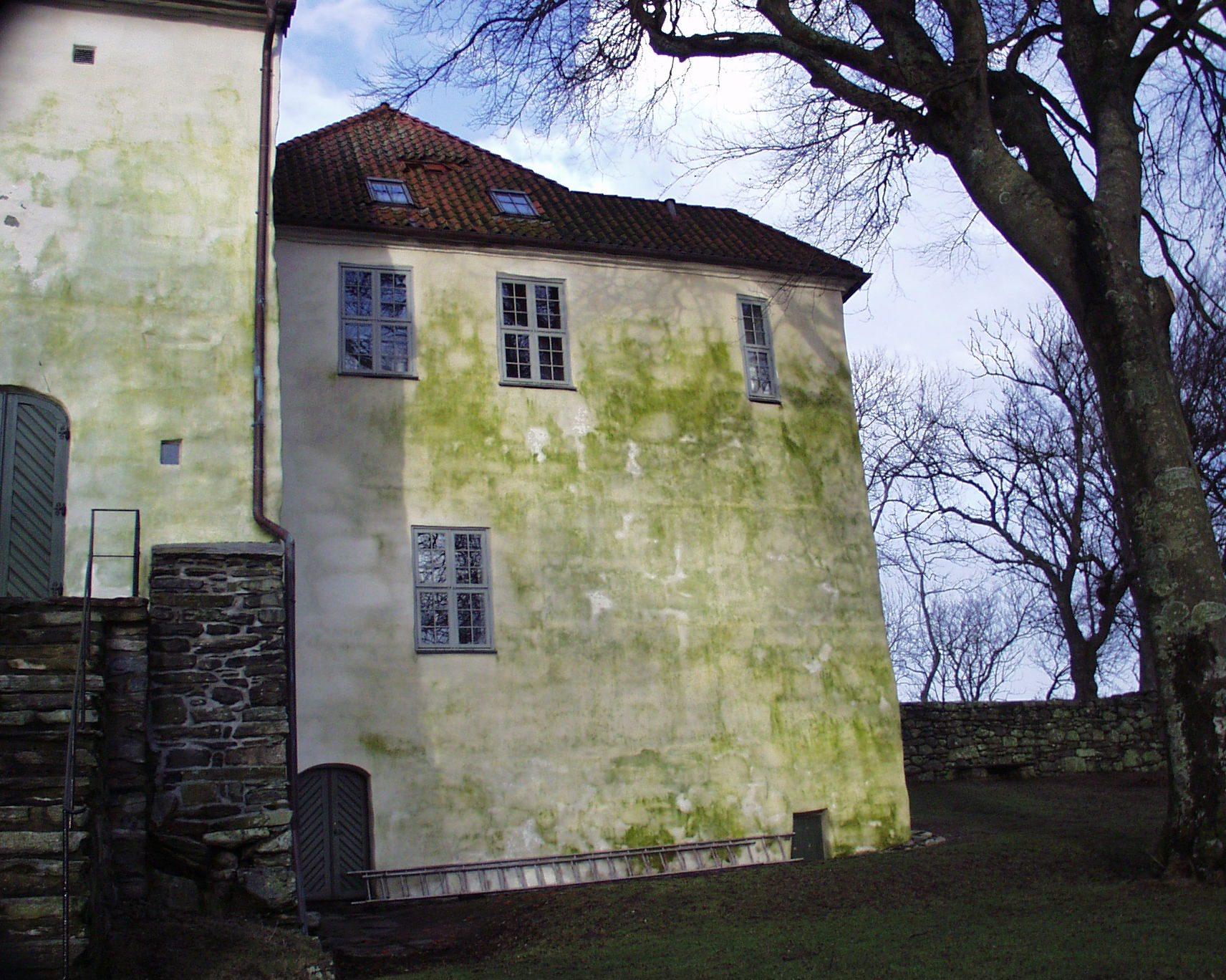 Økt vekst av grønske på fasader som stadig fuktes ned er et økende problem. Utstein kloster Rennesøy kommune. Foto Johan Matsson / Mycoteam