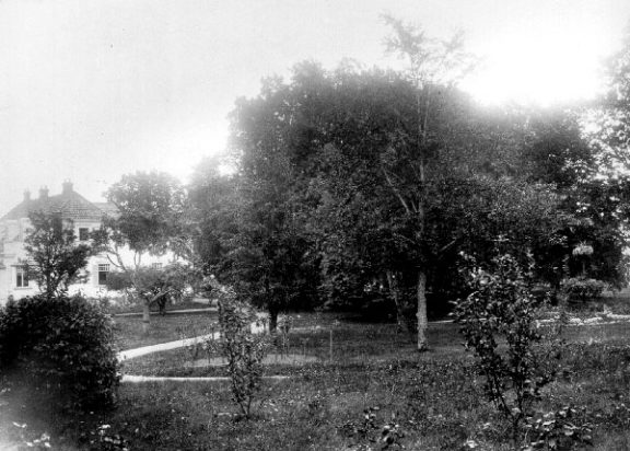 Bilde av parklandskapet og hagen på Grønnli antagelig ca 1920. Foto: Ukjent