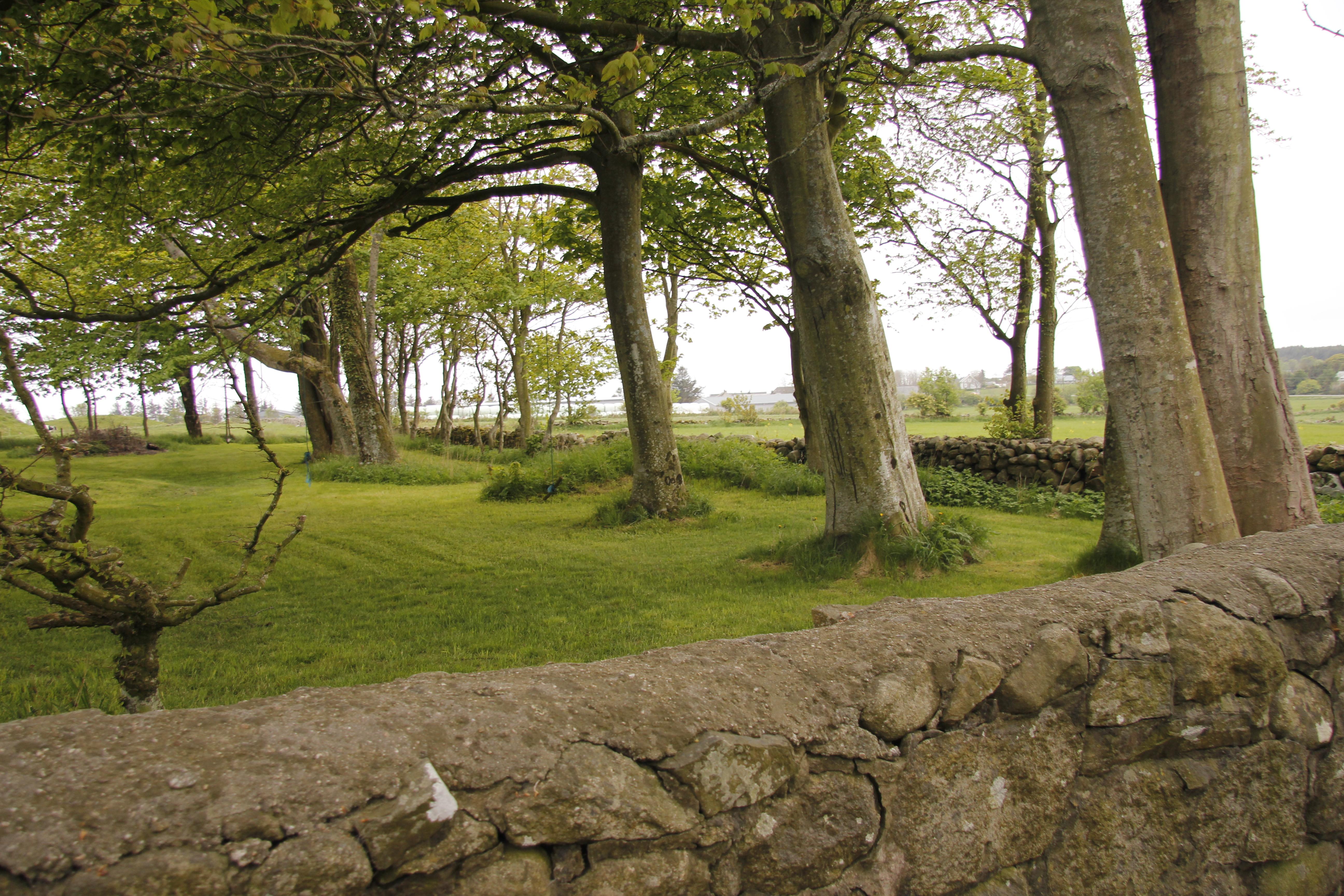Hage- og parkanlegget ble trolig anlagt i den tiden Huseby var lystgård rundt 1800. Størrelsen på dagens hageanlegg er omtrent som på kartet fra 1860. Foto: Marit Vestvik Riksantikvaren