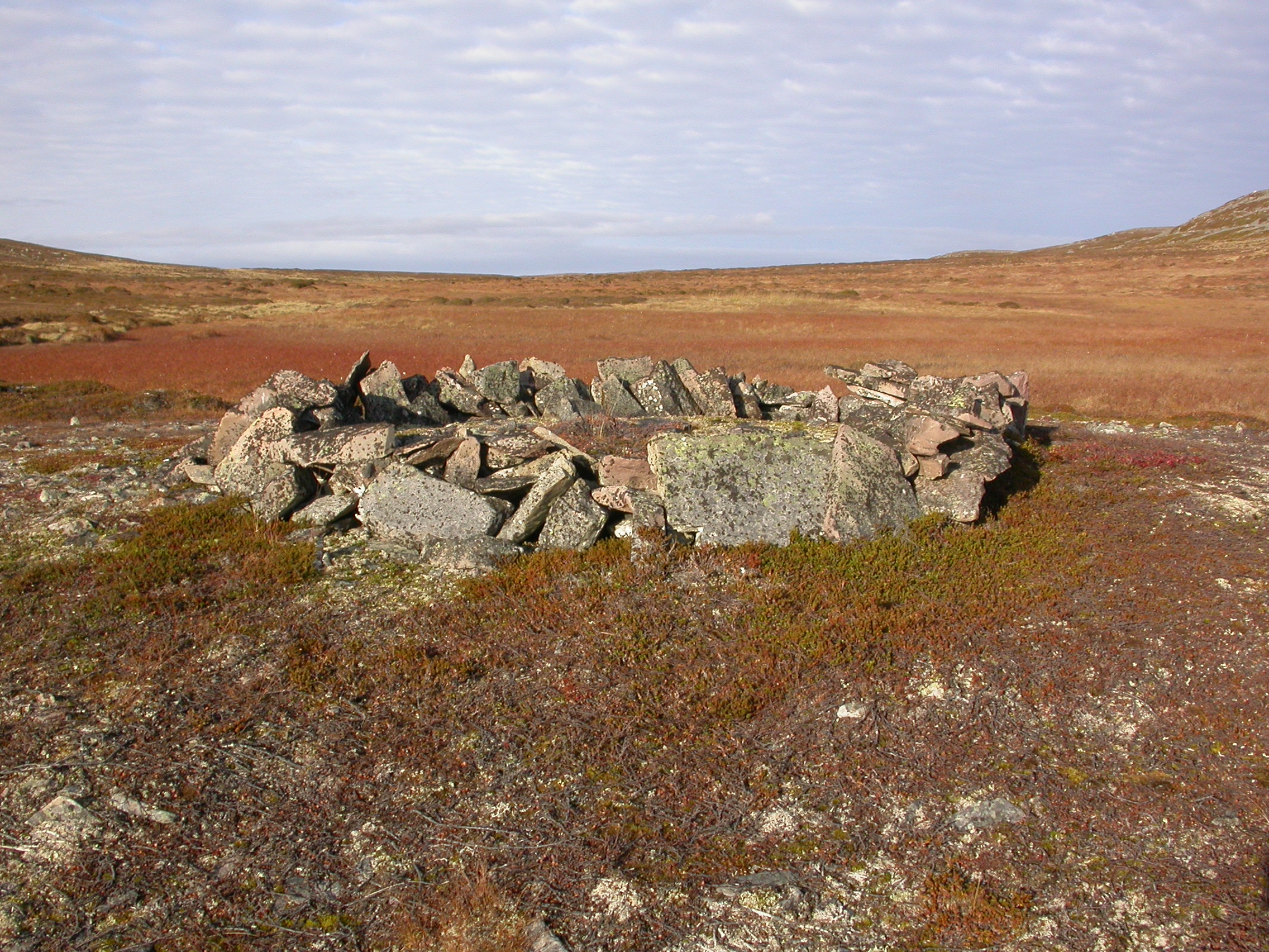 Nedanfor Falkefloget ved Svartnes i Vardø kommune ligg ein steinring (d. 4-45 meter) med ei steinrøys i midten. Ringen er registrert som ein samisk offerring og ligg på ein naken morenerygg godt synleg frå alle kantar. I nærleiken passerer fleire reinstiar og ein reknar med at ringen er knytta til den gamle villreinfangsten i området. Han ligg i eit område som er rikt på liknande kulturminne. Foto: Stine Barlindhaug NIKU