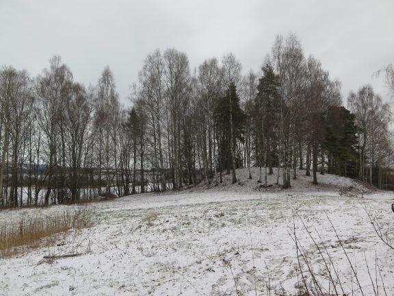 Gravhaugen ved Tvestua er automatisk freda etter Kulturminneloven. Foto: Jorun Elisabet Aresvik Hals Riksantikvaren