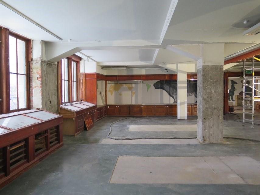 Demonterte utstillingsmontre på Geologisk museum i Oslo.