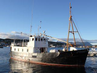 """Bilde av M/S """"Grytøy"""". Foto: Riksantikvaren"""