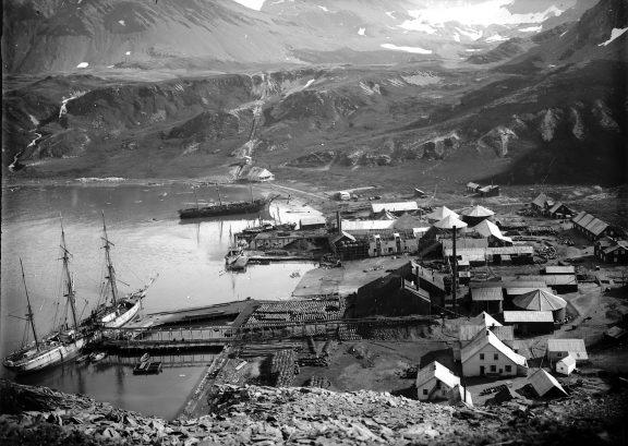 Oversiktsbilde av Grytviken Syd Georgia. Foto: Hvalfangstmuseets fotoarkiv