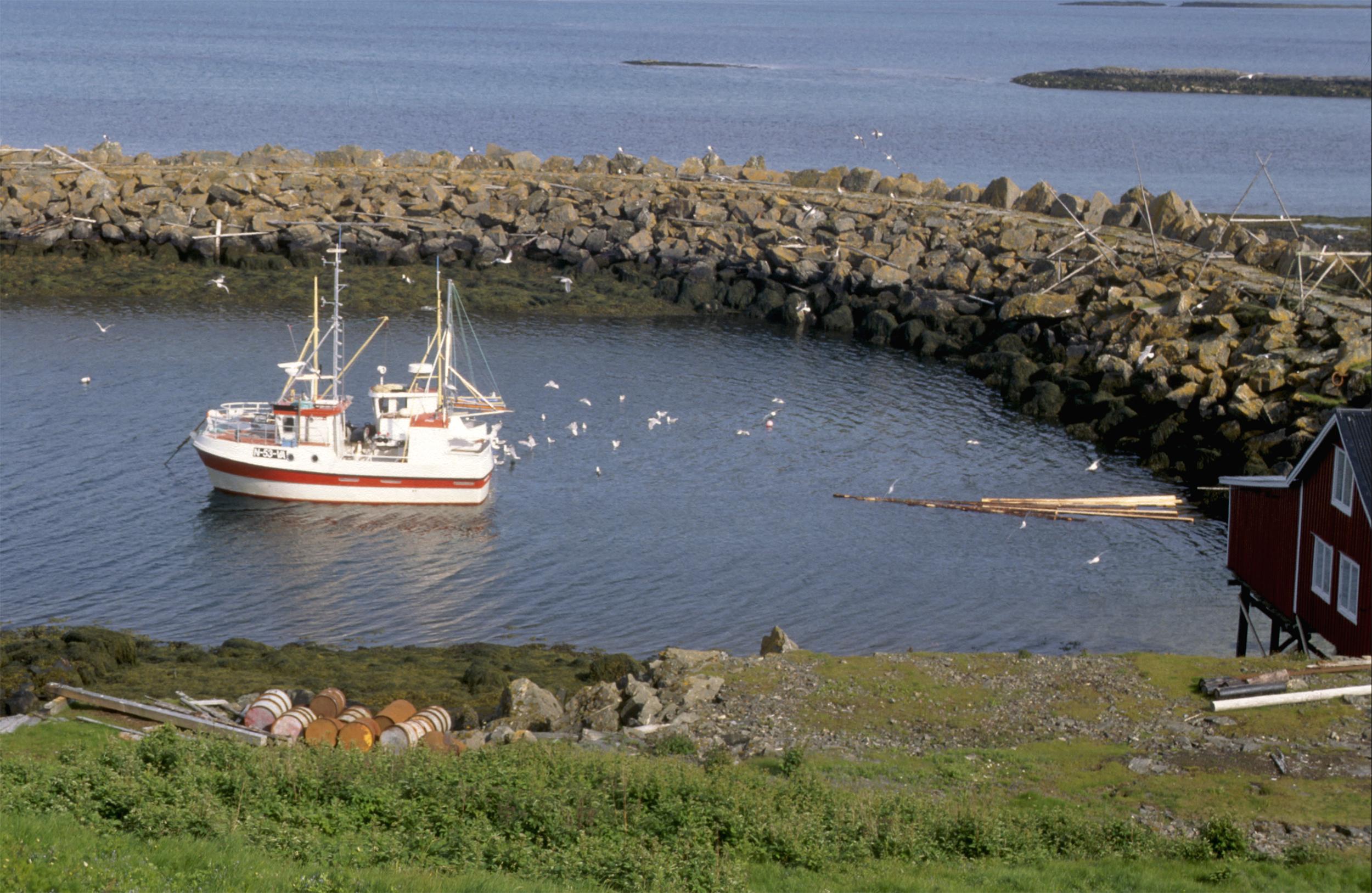 Bilde av Skjærvær fiskerihavn i Vega i Nordland. Moloene ble bygget for å gi gode havneforhold for motorskøytene. Foto: Riksantikvaren