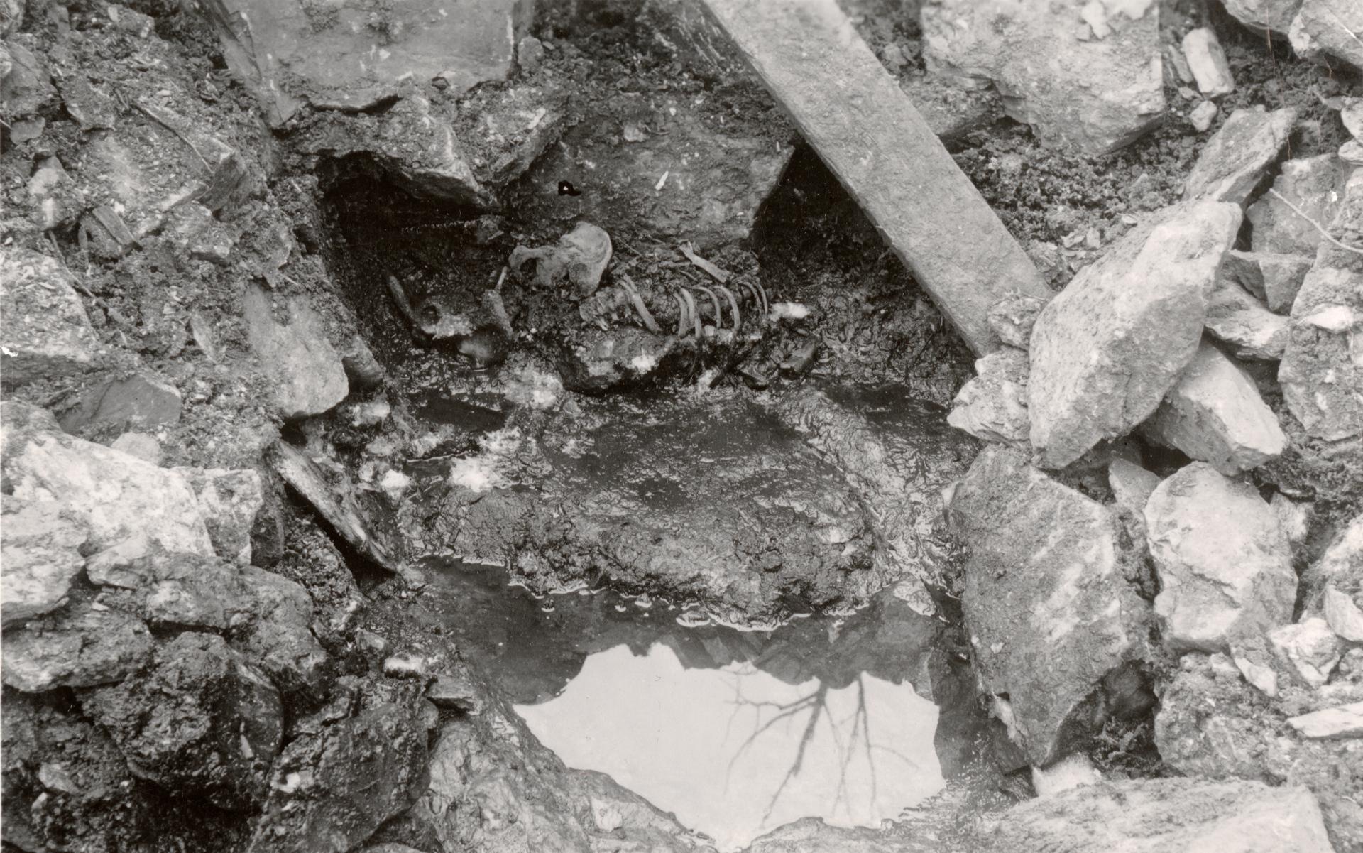 Bilde fra da Fischer utførte utgravinger i 1938. Overraskelsen var stor da de oppdaget restene av et skjelett i brønnen. Foto: Gerard Fischer.