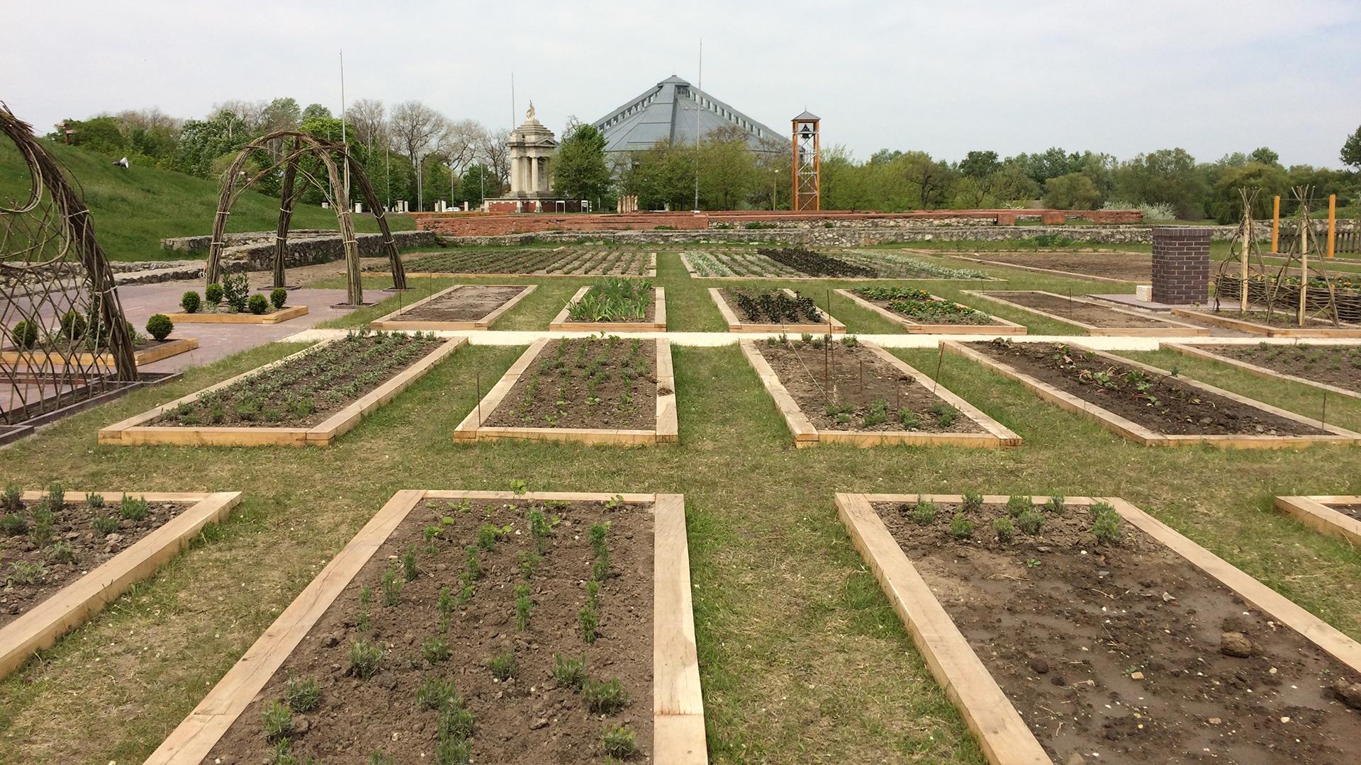 Bilde av urtehagen. Etter hvert skal 10 000 planter spire og gro her sammen med frukttrær og rosebusker som vil danne yttergrensene til hagen. Foto: Desiré Hopen Standal, Riksantikvaren