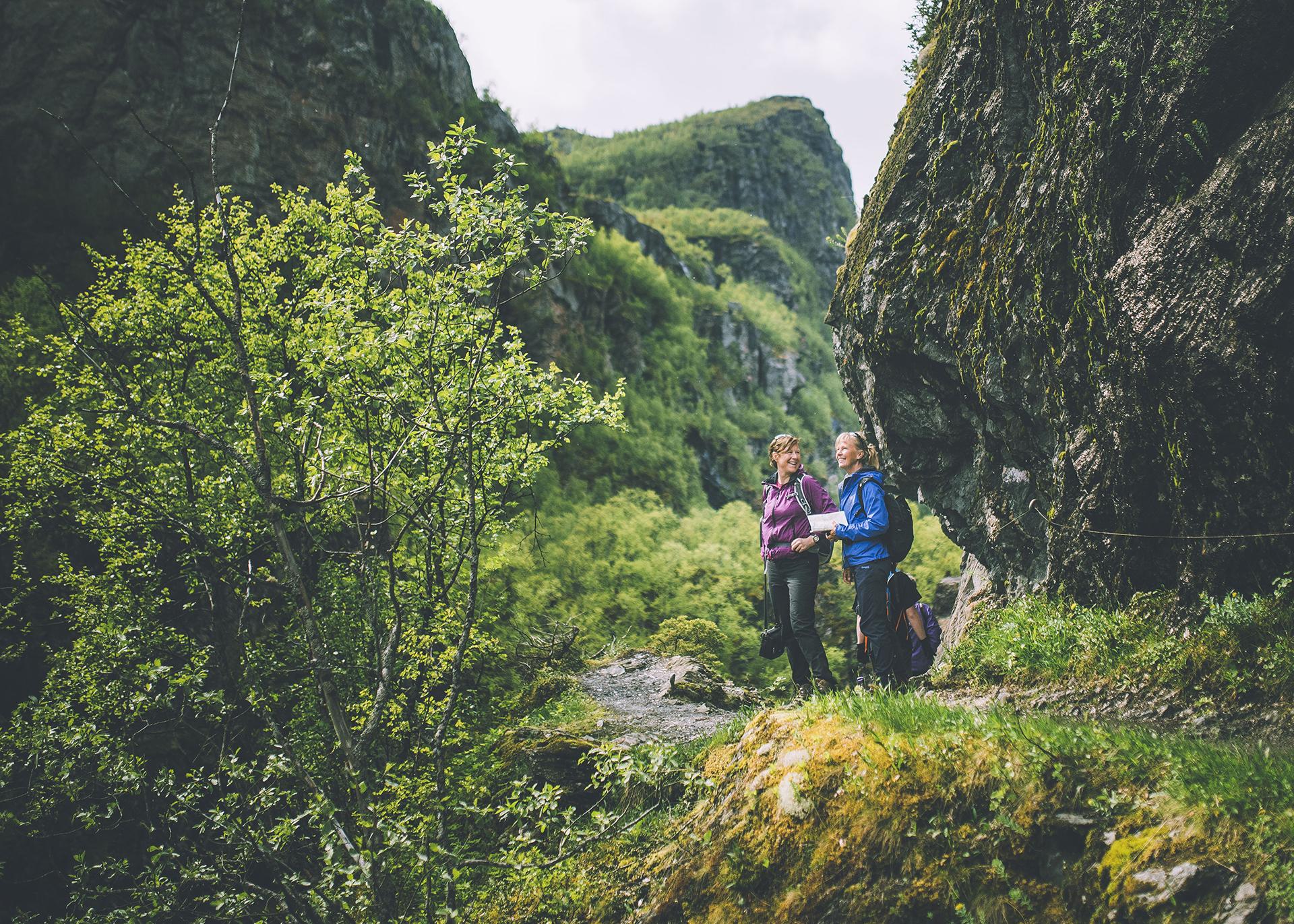 Bilde viser utsikten til en av de historiske vandrerutene. Bildet er tatt i forbindelse med sommeråpning 2017. Foto er tatt av Marius Dalseg Sætre