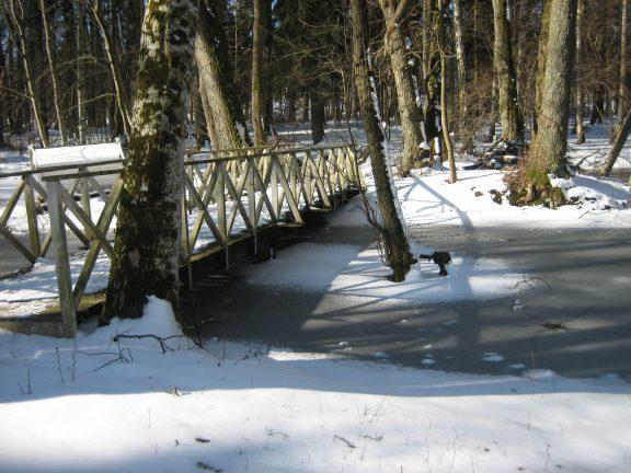 Bilde av Broen over karpedammen i parkskogen. Foto: Linda Veiby, Riksantikvaren