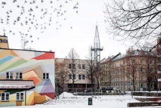 Illustrasjonsfoto fra Urtehagen på Grønland i Oslo, med snø og fugler på himmelen