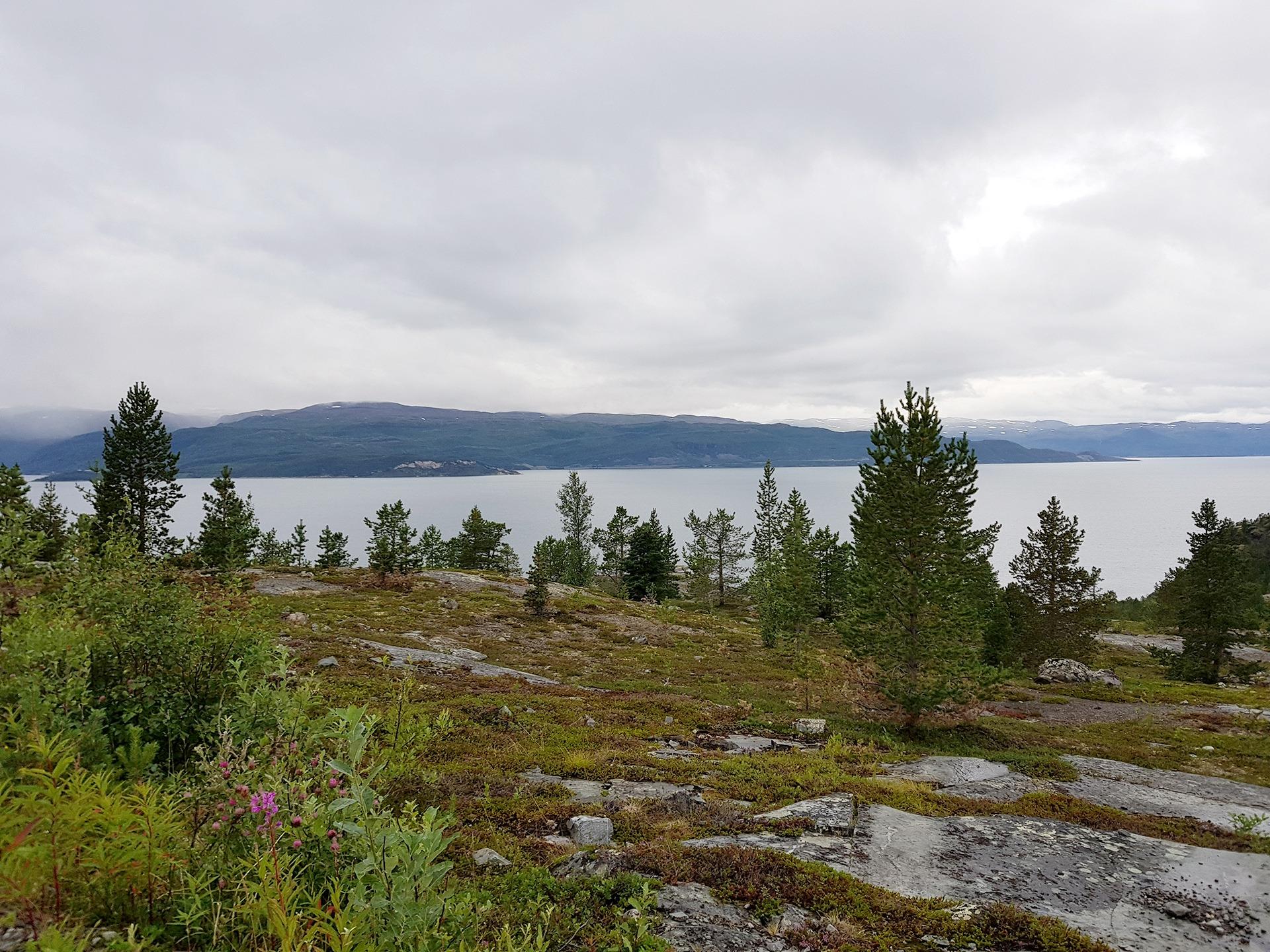 Bilde av Komsaområdet i Alta. Foto: Line Bårdseng, Riksantikvaren.