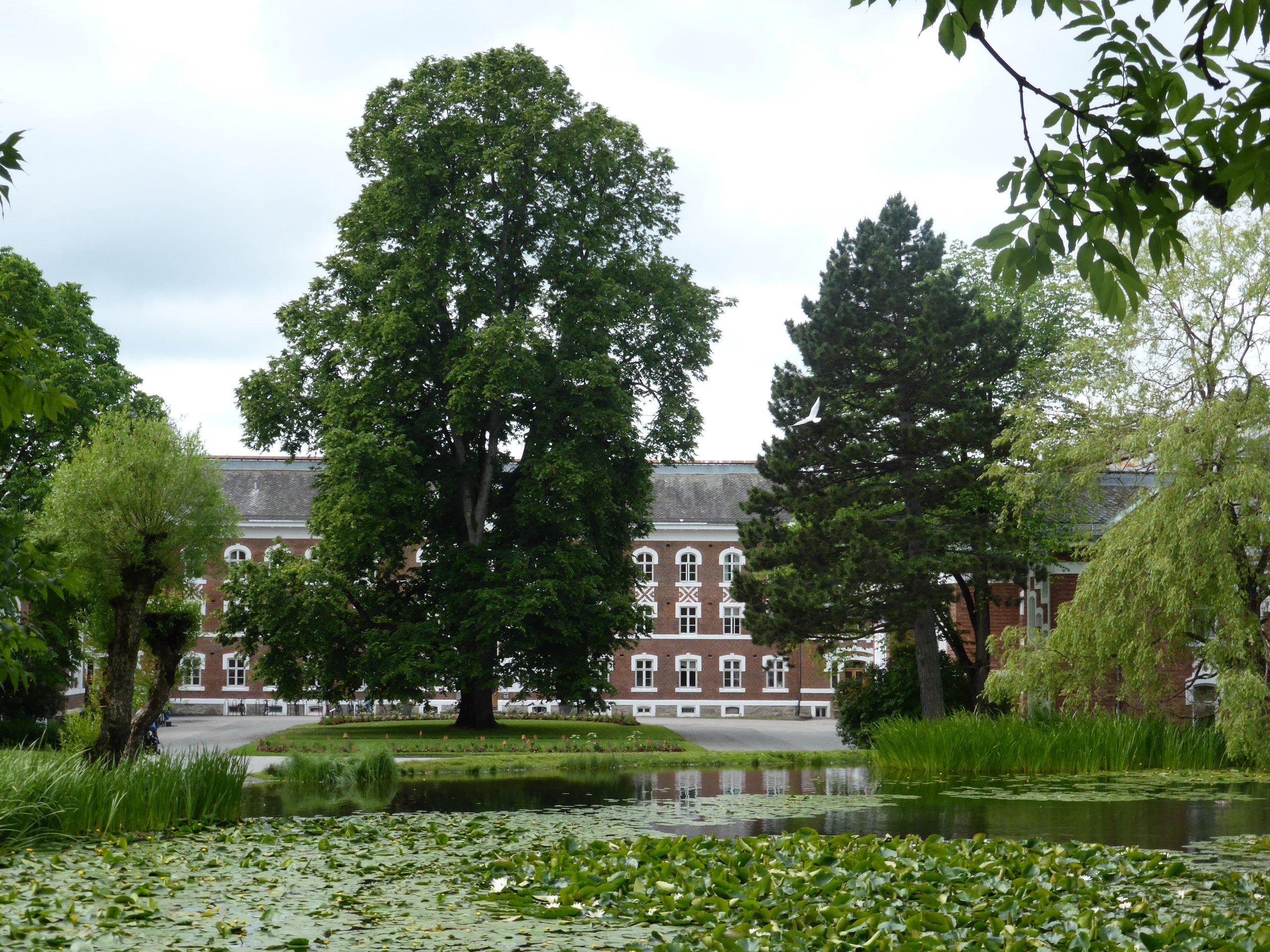 Norges miljø- og biovitenskapelige universitet (NMBU) med park.