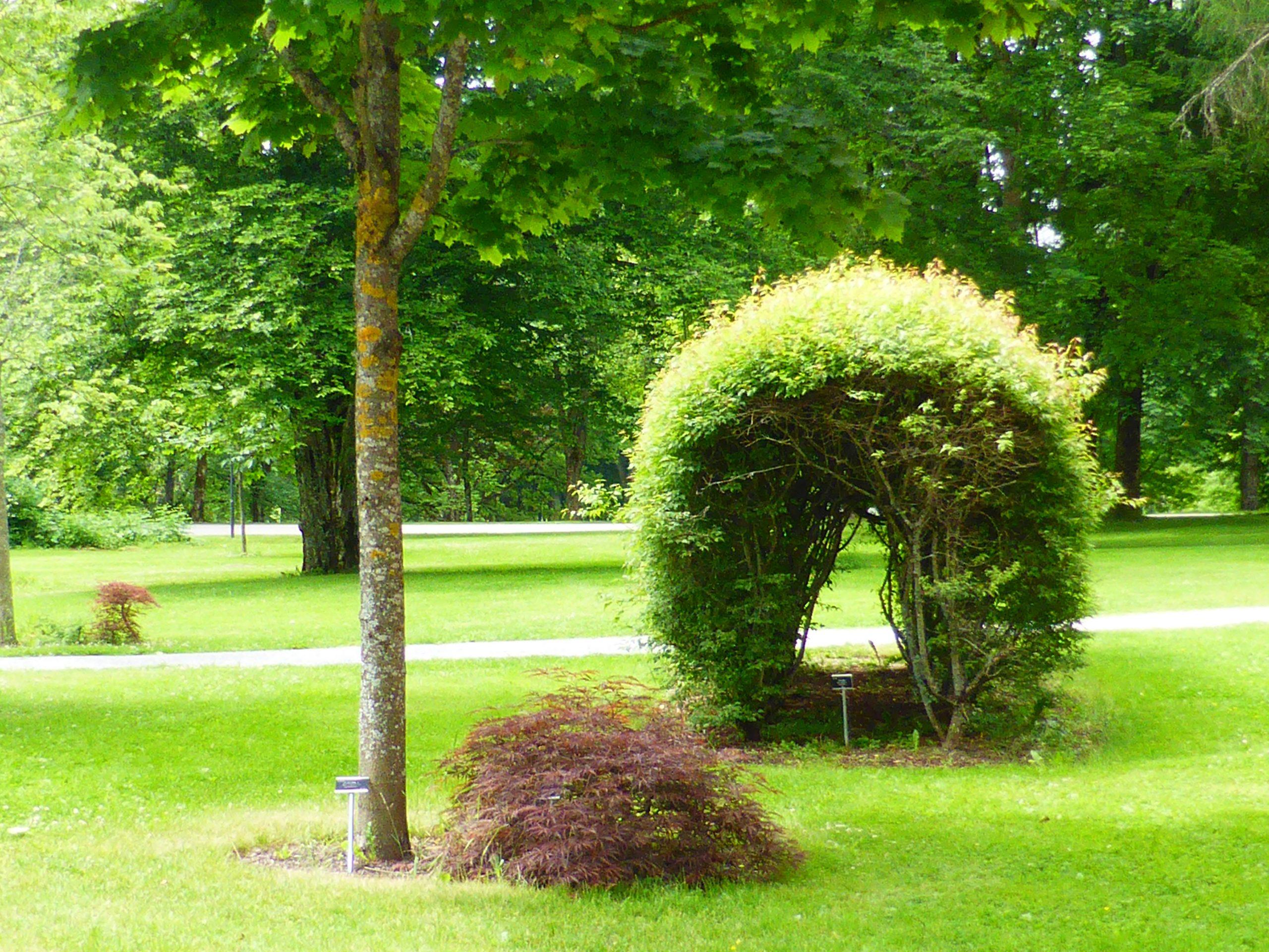Parken ved Norges miljø- og biovitenskapelige universitet (NMBU).