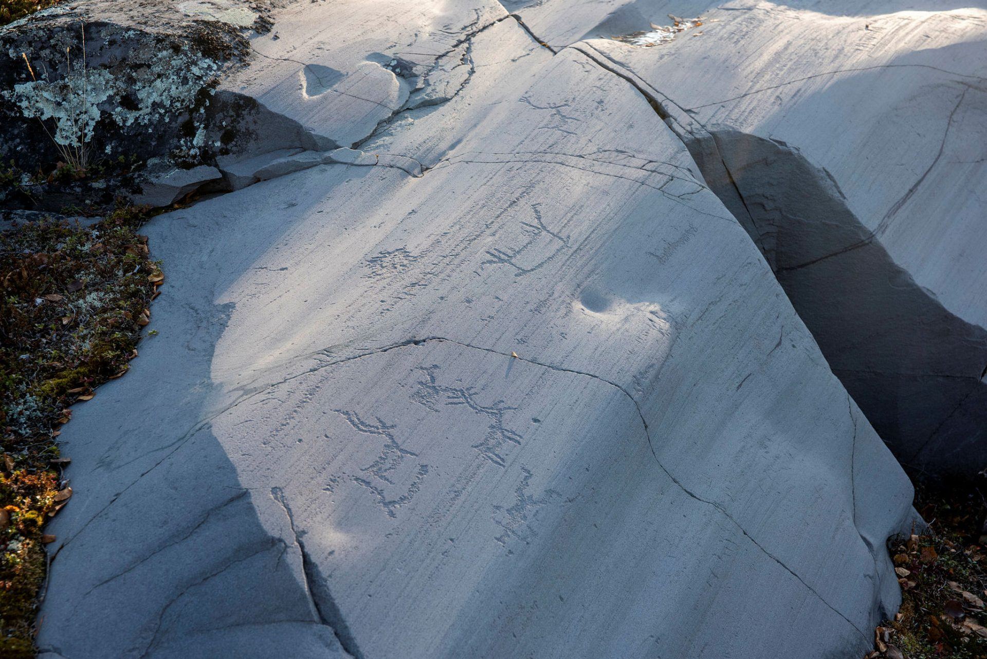 Rock carvings in Hjemmeluft in Alta: Scene featuring people, boat and reindeer. Photo: Arve Kjersheim, the Dircetorate for Cultural Heritage